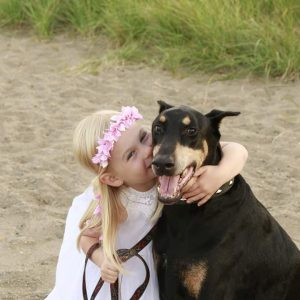 doberman kiss